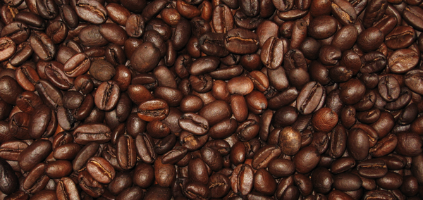 coffee_bean.png