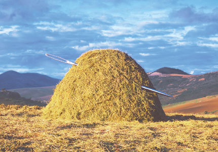 finding-a-needle-in-a-haystack.jpg